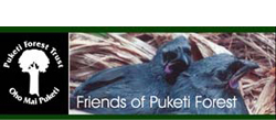 Friends of Puketi Forest logo